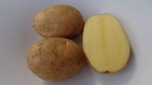 Patate_FriuliVeneziaGiulia
