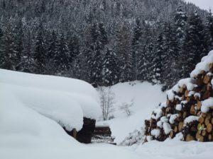Carnia in inverno